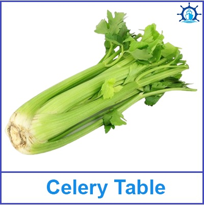 Celery Table