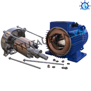 Problems In Alternating Current Electric Motors
